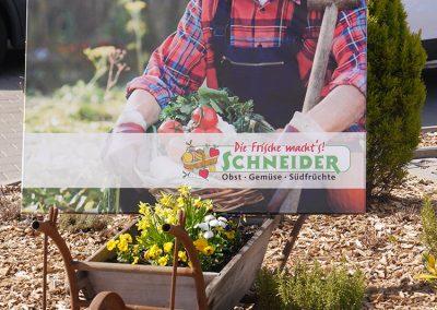 Schneider: Obst - Gemüse - Südfrüchte